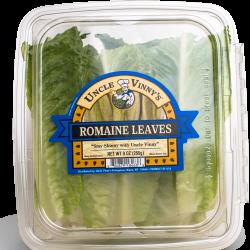 Romaine Leaves
